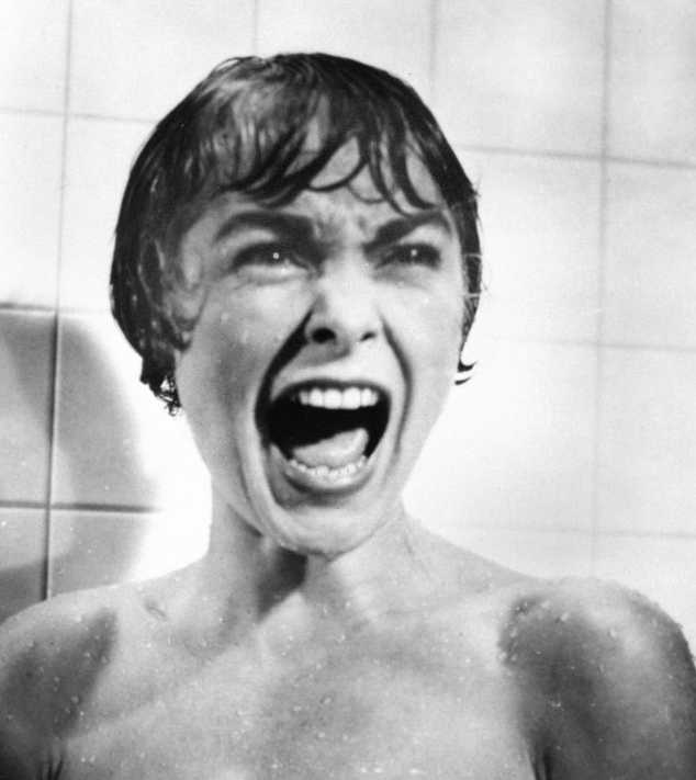 http://minaday.com/movies/wp-content/uploads/2010/03/psycho_7.PNG